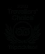2020 travellers choice logo